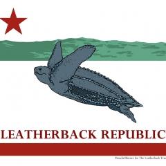 Leatherback T-shirt ©Pamela Blotner